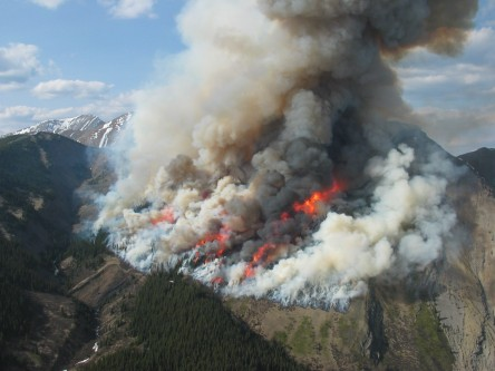 Natural Wildfire Patterns