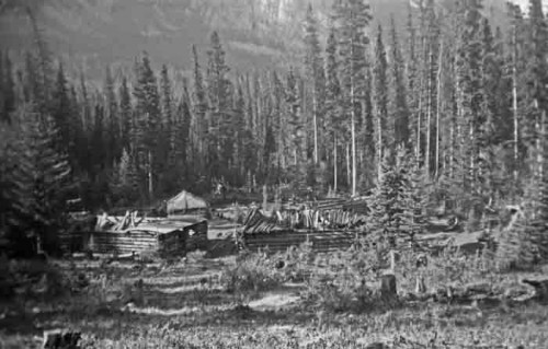A Logging History of the Whirlpool Valley, Jasper National Park